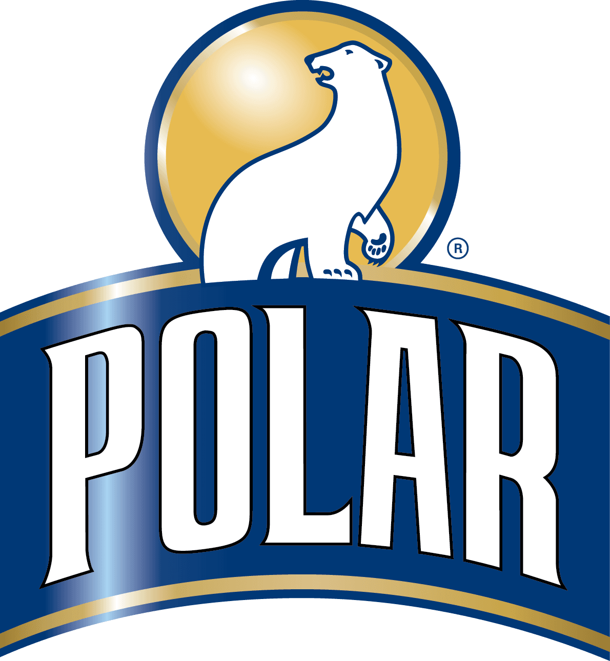 Polar_Brand_LockUps_2017 (1)_Polar_Dynamic_Outline-07